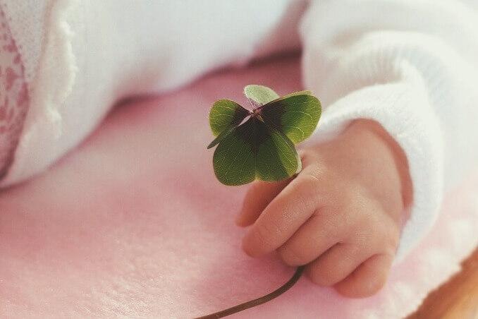 【赤ちゃんと子供のための】ハーブティー完全ガイド