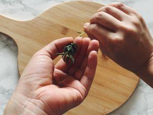 ローズマリーの葉の取り方3