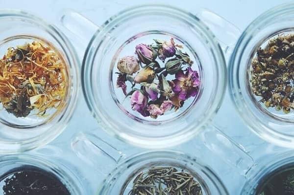 5種類のハーブティーの作り方|ホット・アイス・ラテのレシピ